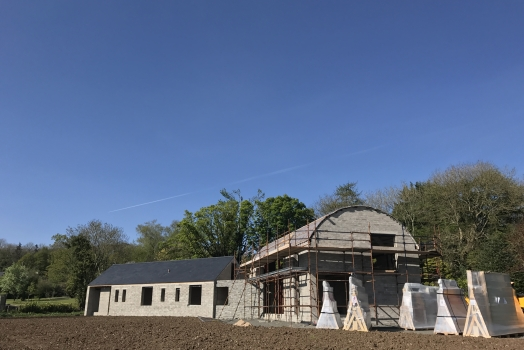 Modern Irish House progress update